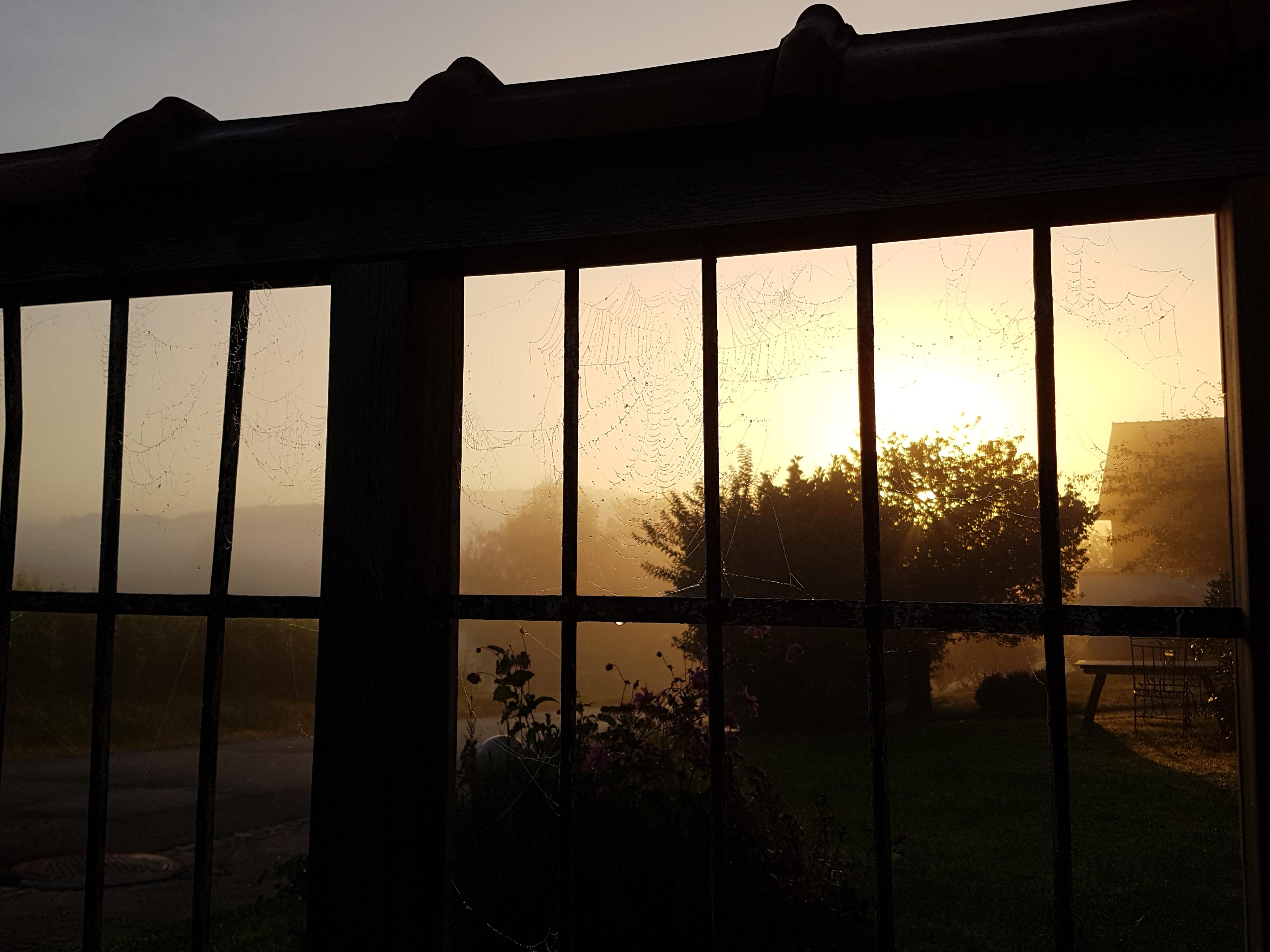 Herbstmorgen im Sonnenhaus nahe Riegersburg